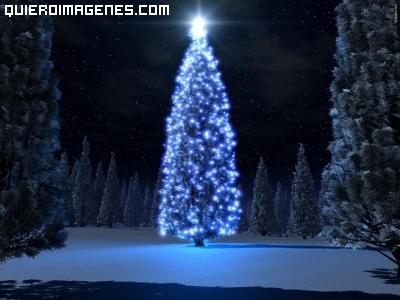 Imagen de un árbol de navidad