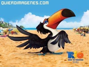 El tucán Rafael de la pelicula Rio