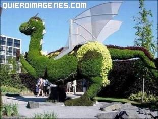 Dragón vegetal alado