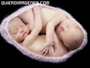 Gemelos en el útero