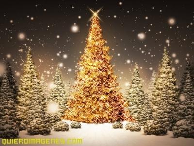 Arbol De Navidad Dorado - Arboles-de-navidad-dorados