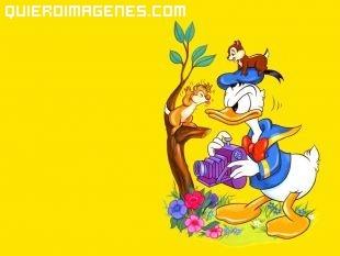 El pato Donald enfadado con las ardillas