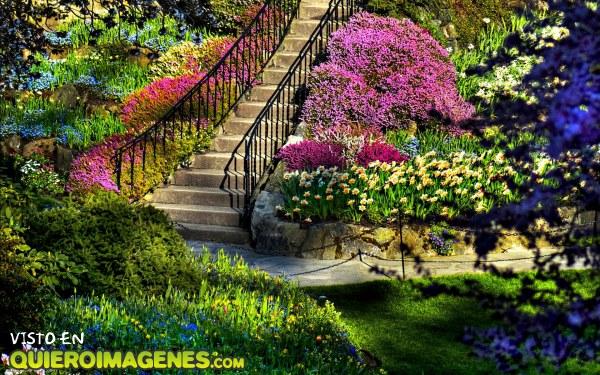 Un jardín a todo color