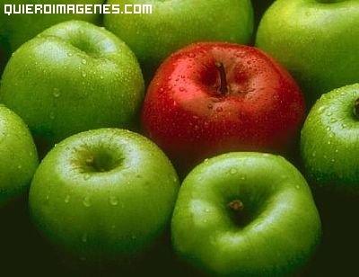 Fotos de Manzanas