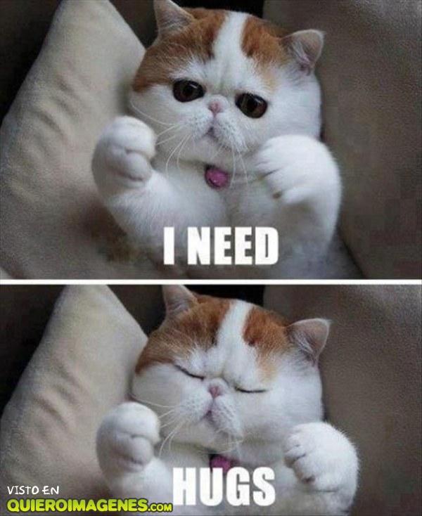 Necesito un abrazo