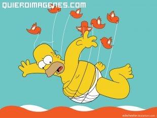 Homer Asustado