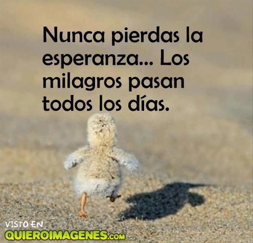 ¡Nunca pierdas la esperanza!