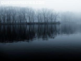 Niebla desde el lago hacia el bosque