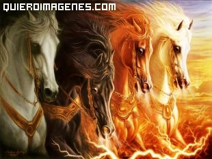Imagen de cuatro grandes caballos