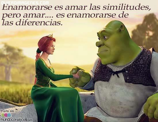 Amar las similitudes
