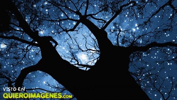 Noche embrujada