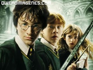 Harry Potter y amigos