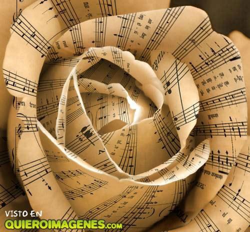 Rosa hecha de partituras