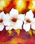 Imagenes Flores Hermosas