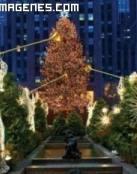 Arbol de Navidad de Rockefeller Center