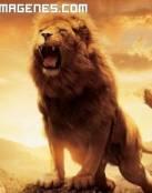 El leon de Narnia