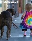 Paseando con su perro