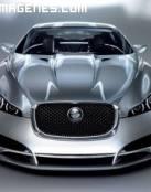 Jaguar CXF