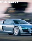 Precioso Audi R8