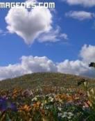 Nube con forma de corazón en el cielo