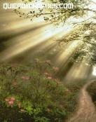 Dios ilumina los caminos