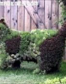 Escultura vegetal de un lince