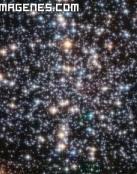 Estrellas brillantes en el cielo