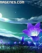 Flores que lucen en la oscuridad