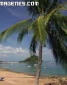 Isla de Taboga en Panamá