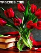 Ramo de tulipanes rojos y libros
