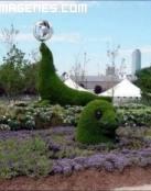 Escultura vegetal de foca