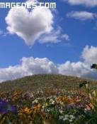 Imagen de un corazon con forma de nube