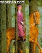 Amazona montando a caballo