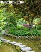 Jardines Butchart en Vancouver