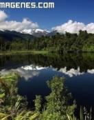 Lago rodeado de bosque