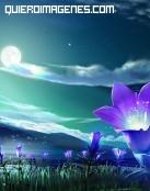Flores fantasía