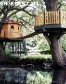 Casa en un arbol