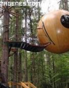 Una casa bola en un arbol