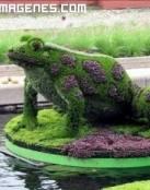 Escultura de Rana