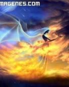 La magia del dragon