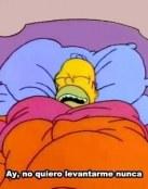 Homer Simpson en cama
