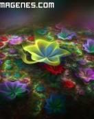 Flores mágicas