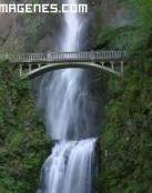 El puente sobre el río
