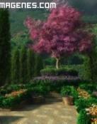Camino al jardín