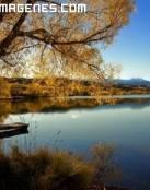 Lago en calma