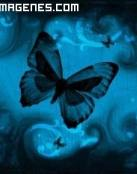 Mariposas volando sobre un fondo azul