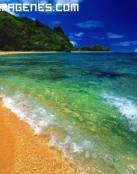 Playa ideal