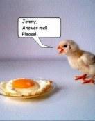 ¡Jimmy contéstame!
