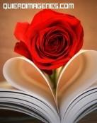 Rosa y corazón