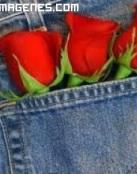 Rosas rojas para un regalo informal